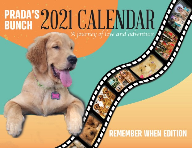 2021 Pradas Bunch Calendar - Remember When Edition